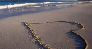 Idee ecologiche per San Valentino