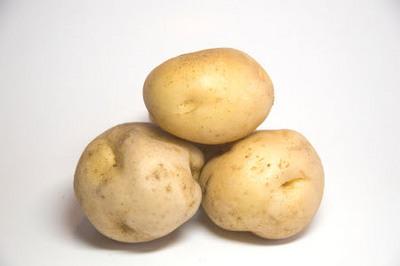 amflora, patata OGM