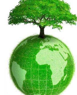 città ecosostenibiley