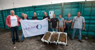 Healthy Seas_North Sea