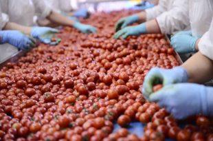 AgriFood One, l'agroalimentare incontra la finanza