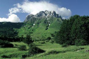 L'Abruzzo è la regione col pollice più verde d'Italia